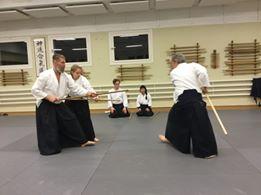 Action Med 31-kata Kumijo!